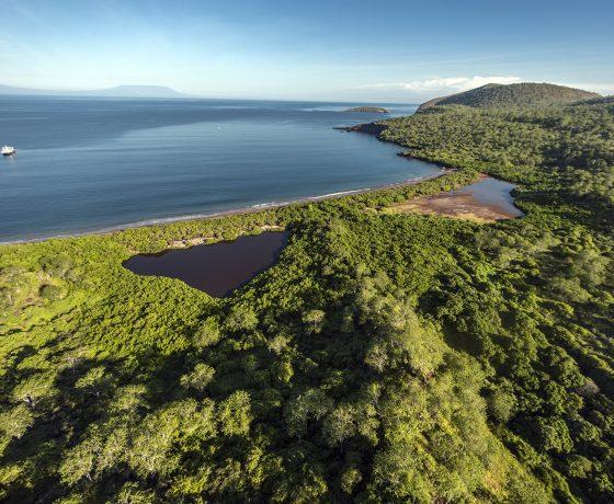 Isla Santiago Croisière  Galapagos