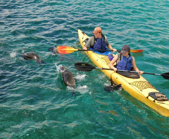 Galapagos Aventure Multisport